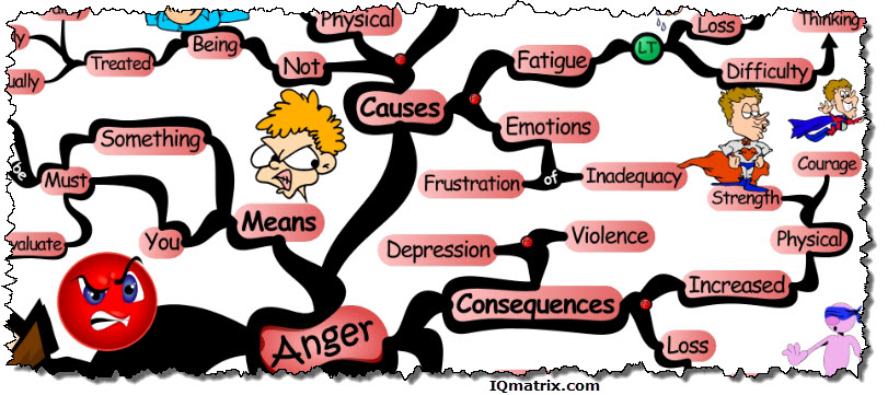 The Consequences of Anger