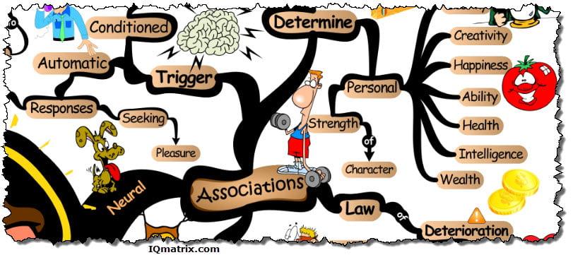 Neural Associations