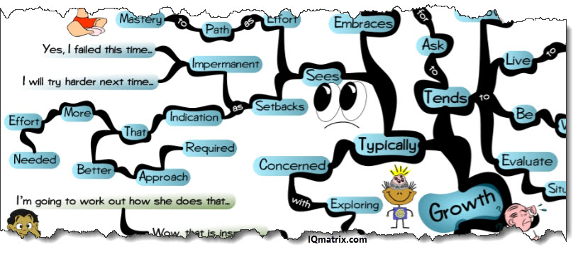 Growth Mindset Perspectives