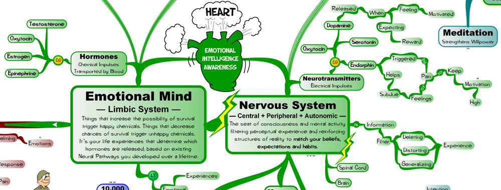 Hormones and Neurotransmitters MasterMind Matrix.