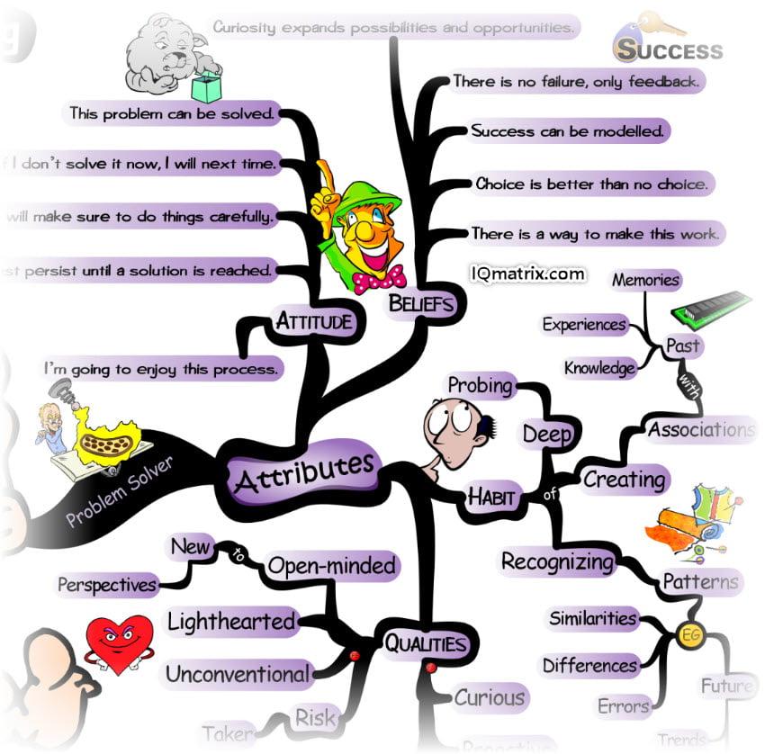 Problem Solver Attitude, Beliefs and Habits