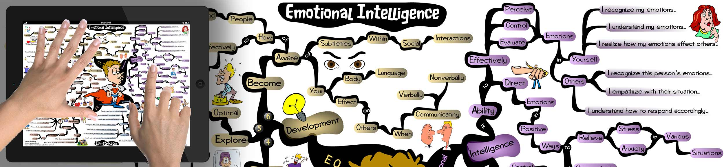 whats emotional intelligence Consortium for research on emotional intelligence in organizations emotional intelligence 5 ( wwweiconsortiumorg ) an example of this research on the limits of iq as a predictor is the sommerville study, a.